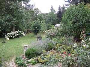 Blick in die 'Weite' des Gartens